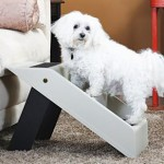 DIY Home Grooming Guide, Part 1c: Taking Puppy Steps