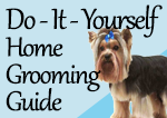 Do-It-Yourself Home Grooming Guide